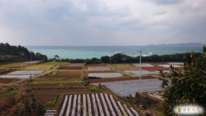 鹿児島県長島町