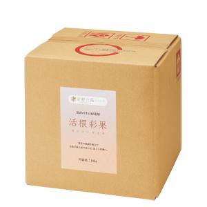 活根彩果(カッコンサイカ)【10kgボックス】